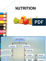 12 Nutrition