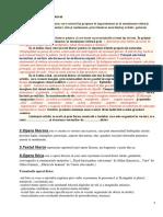 Argumentare text literar.docx