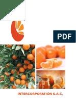 Mandarina CLI