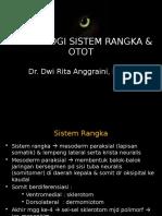 1 . Embriologi Rangka & Otot