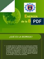 Biomasa Expo Final