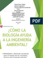 Biorremediacion 1 Dddd