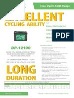 DP-12100 V2.1
