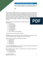 Características y Propósitos Productivos