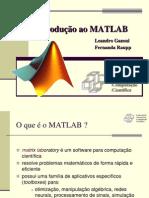 Int Matlab