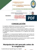 EXPOCICON HIDROBIOLOGICOS - CONGELACION Y PROCESOS.pptx