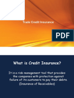 Credit Insurance Ppt Basic
