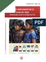 Guia Plan de Vida Metodologia TREN Final v Febrero 2014 (1)