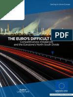 The Euro's Difficult Future
