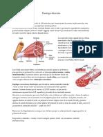Fisiología Muscular y neuromuscular