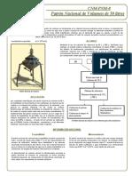 PATRON VOL CENAM.pdf