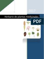 Herbario Plantas Medicinales