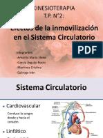 Efectos de la inmovilización en el Sistema Circulatorio (2)