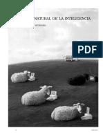 Historia natural de la inteligencia.pdf
