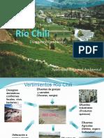 diagnosticoambientalriochili-armapresentacionfinal-110706010508-phpapp02.pptx