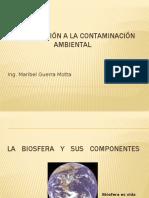 Introducción a La Contaminación Ambiental