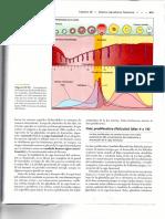 img475.pdf