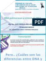 3 Ra Clase Transcripcion de Adn