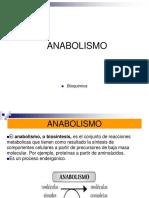 11.- ANABOLISMO