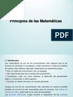 principios-matematicas