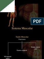 5A Anatomia Sistema Muscular.pptx