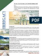GUÍA nº1 EVAPOTRANSPIRACIÓN.pdf