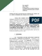 Auxilio Judicial - Filiacion - Paola Chavez
