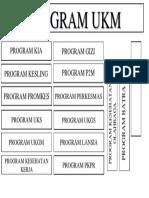PROGRAM UKM.docx