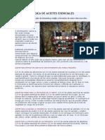 FORMULAS MAGICA DE ACEITES ESENCIALES.doc