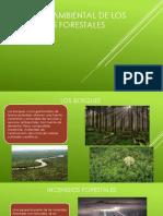 Impacto Ambiental de Los Incendios Forestales1