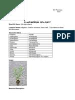 Group 6 Plant Manuscript