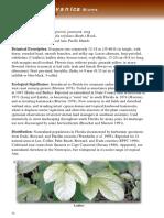 bischofia javanica.pdf