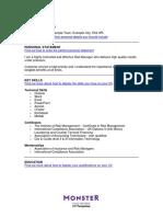 Finance Risk Manager Cv Template