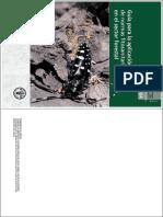 2x1 Manual FAO Uso de Fitosanitarios Forestales