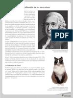 clasificasion de lilneo.pdf