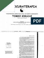 Auto Curate Rap i a Tomio Kikuchi 1