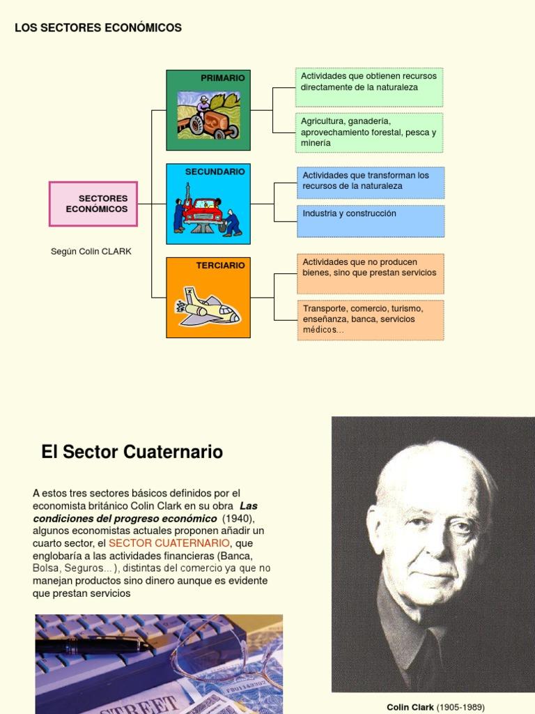 Sectores Económicos | Sector terciario de la economía | Bosques