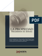 02 La Propiedad Mecanismos de Defensa