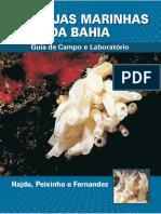 LIVRO - Esponjas Marinhas da Bahia