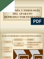 Aparato Reproductor Femenino (1)