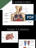 semiología respiratoria.pptx