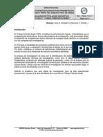 1.- Ci-200-01 Formato Perfil de Consultoria Profesional
