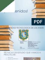 Universidad Tecnologica de Los Andes