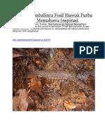 Fosil Biawak Purba Kalimantan