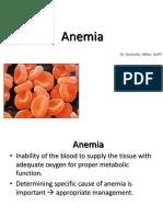 Anemia & Leukemia Unmal