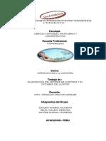 Informe de Auditoria y Dictamen de Auditoria OK 12-07-17