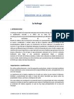 Costos de Produccion de La Lechuga