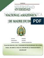 PLAN_DE_NEGOCIOS_CRIA_Y_ENGORDE_DE_POLLO.docx