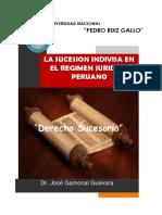 SUCESION INDIVISA -