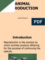 Animal Reproduction - Class Presentation (PPT)